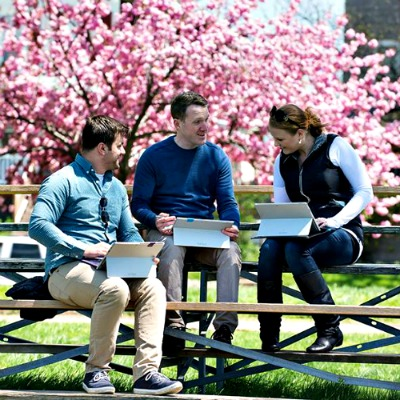 three people work with tablets outside on a bench in front of a cherry blossom tree